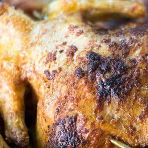 pollo asado en salamanca